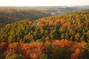 The Ozarks in Fall