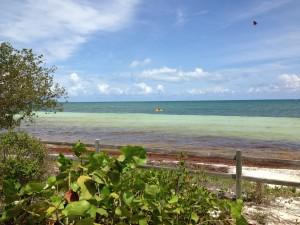 Bahia Honda Beach, Mile 37, Florida Keys